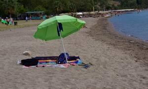 Συναγερμός: Μέδουσα – δολοφόνος τρομοκρατεί τη Μεσόγειο - 7 τραυματίες