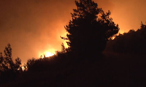 Νύχτα αγωνίας στην Εύβοια: Μαίνεται μεγάλη φωτιά στην Κάρυστο