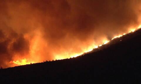 Φωτιά ΤΩΡΑ στην Κάρυστο: Κάτοικοι απομακρύνθηκαν από τα σπίτια τους