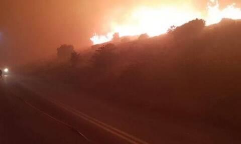 Εφιαλτική νύχτα στην Κάρυστο: Χωρίς ενεργό μέτωπο η φωτιά - Εκκενώθηκαν σπίτια