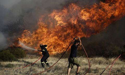 Συναγερμός στην Πυροσβεστική: Φωτιά στο Λαύριο