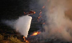 Φωτιά ΤΩΡΑ: Συναγερμός στο Λαύριο για τη μεγάλη πυρκαγιά - Ενισχύονται οι πυροσβεστικές δυνάμεις
