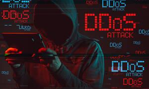 """Спецслужбы зафиксировали пять DDoS атак на """"прямую линию"""" с Путиным"""