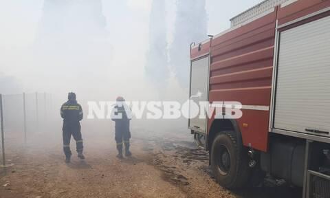 Φωτιά ΤΩΡΑ: Χωρίς ενιαίο μέτωπο η πυρκαγιά στο Λαύριο (pics&vid)