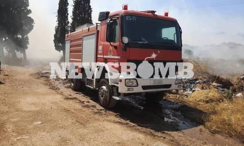 Λαύριο: Υπό μερικό έλεγχο η πυρκαγιά - Τι δυσκολεύει το έργο των πυροσβεστών (pics&vid)