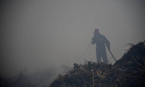 Φωτιά ΤΩΡΑ στα Άνω Λιόσια