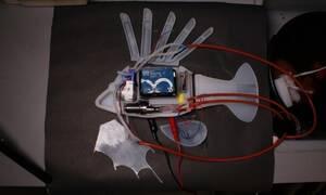 Το πρώτο ρομποτικό ψάρι που κινείται με συνθετικό αίμα
