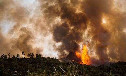 Φωτιά ΤΩΡΑ: Πύρινα μέτωπα σε Καλάβρυτα, Αίγινα, Φυλή