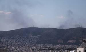 Τραγωδία στη Φυλή: Ένας νεκρός σε εργοστάσιο κοντά στη μεγάλη πυρκαγιά (pics)