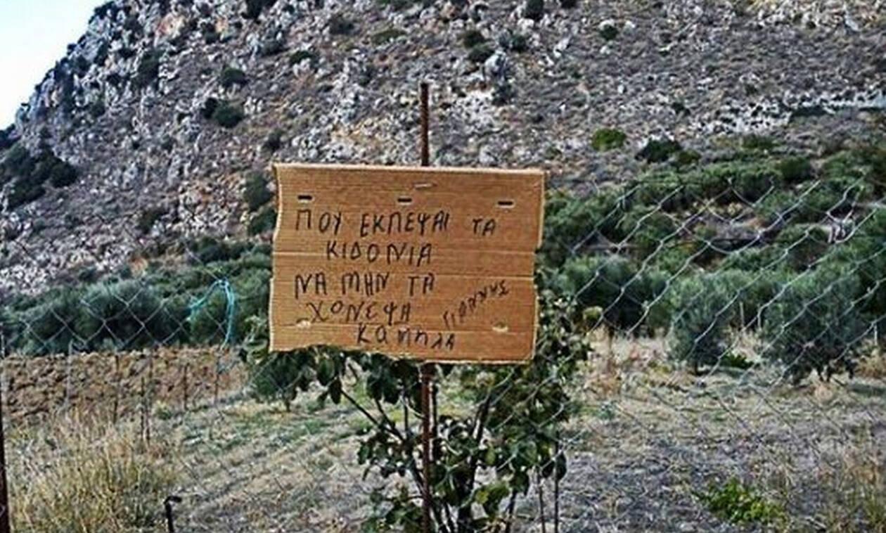 Τρελό γέλιο: Δείτε τι γράφουν ορισμένες πινακίδες στην Κρήτη! (pics)