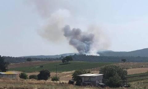 На Эвбее эвакуирован населенный пункт Макрихори в связи с пожаром