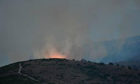 Φωτιά ΤΩΡΑ: Πύρινη κόλαση στην Εύβοια - Ολονύχτια μάχη με τις φλόγες (pics+vids)