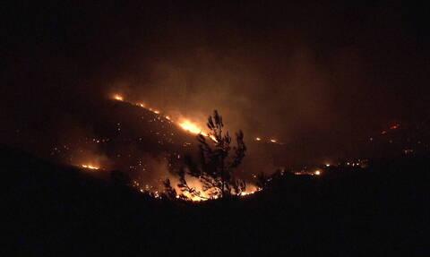На Эвбее эвакуированы жители 4 населенных пунктов из-за пожара