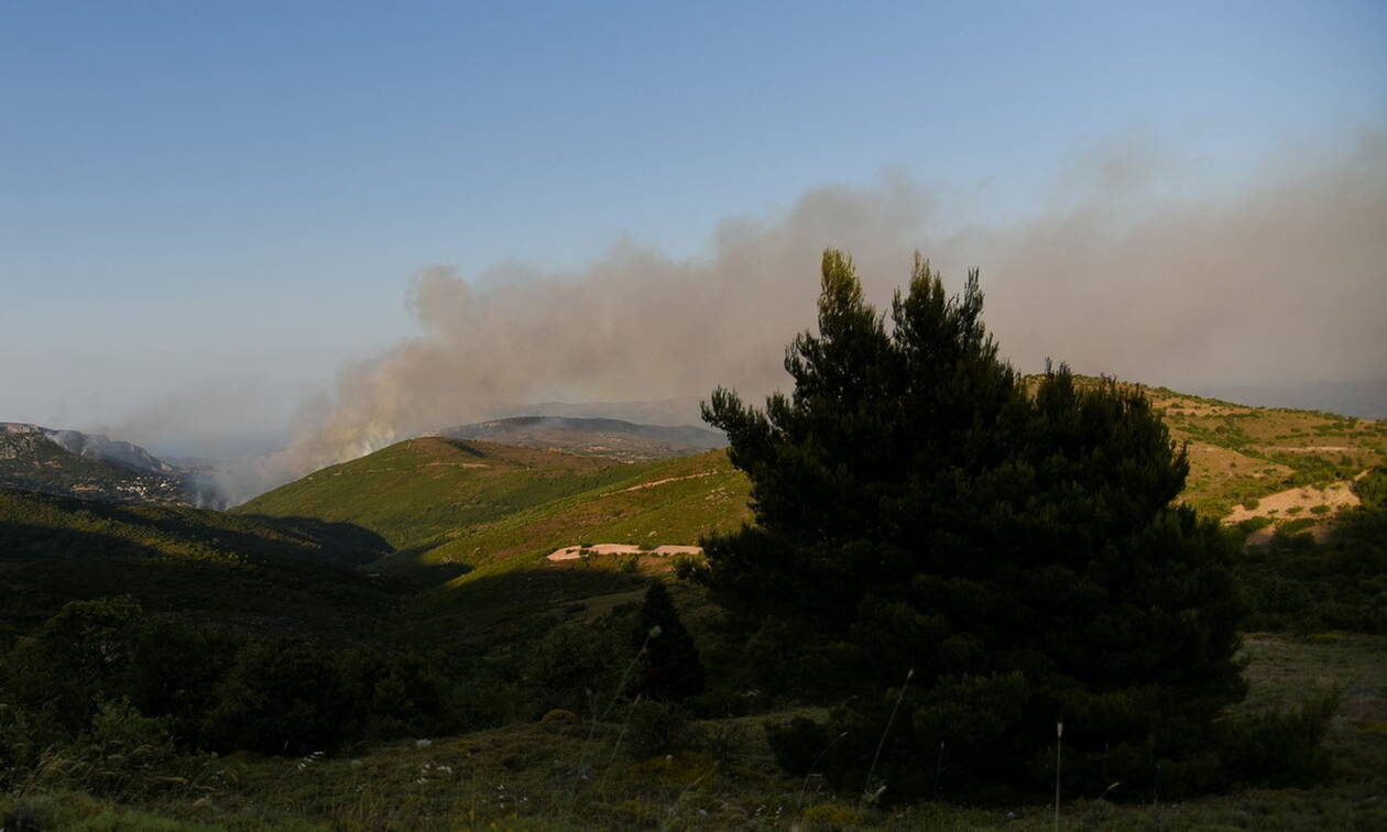 Φωτιά ΤΩΡΑ στην Εύβοια: Μάχη σε τρία μέτωπα δίνουν οι πυροσβέστες (pics+vid)