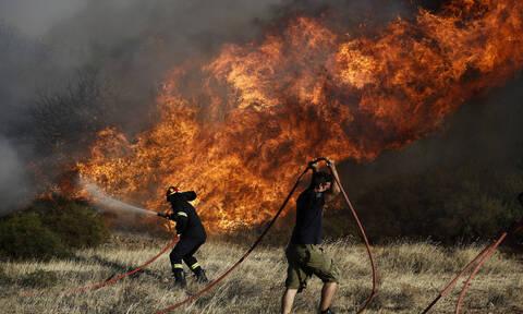 Φωτιά ΤΩΡΑ στην Εύβοια: Σε τρία μέτωπα η μάχη - Εκκενώθηκαν οικισμοί - «Υποψιαζόμαστε εμπρησμό»