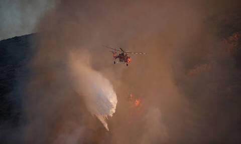 Φωτιά στην Εύβοια: Συνελήφθη κάτοικος για εμπρησμό - Σε τρία μέτωπα η μάχη των πυροσβεστών