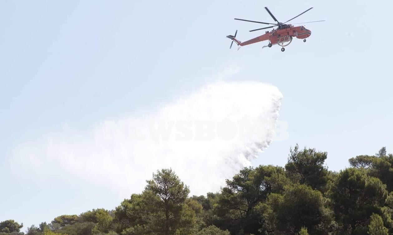 Φωτιά στα Σπάτα: Υπό έλεγχο η πυρκαγιά (pics&vid)
