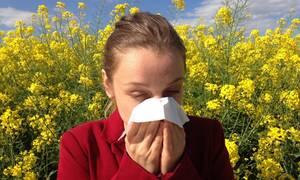 ΕΟΦ: Ανακαλούνται όλες οι παρτίδες σκευάσματος για τις αλλεργίες (Pics)