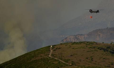 Φωτιά στην Εύβοια: Εφιάλτης δίχως τέλος - Αναζωπυρώσεις και νέο μέτωπο στο Τραχήλι