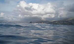 Κίνδυνος! Αν δείτε ΑΥΤΟ στη θάλασσα, μην το αγγίξετε (Pics)