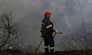Κρήτη: Χειροπέδες σε 45χρονο για τη μεγάλη φωτιά στις Βρύσες Αποκορώνου