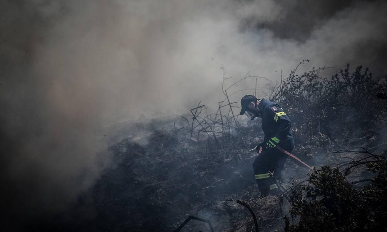 Θρίλερ με τη φωτιά στην Εύβοια: Σε πολλαπλά μέτωπα η μάχη με τις φλόγες - Δεν κοπάζουν οι άνεμοι