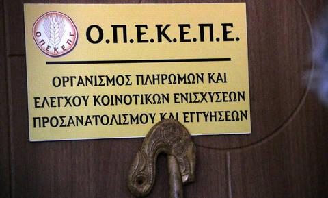 ΟΠΕΚΕΠΕ: Μεγάλη πληρωμή ύψους 10 εκατ. ευρώ σε 9.305 δικαιούχους