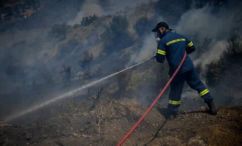 Φωτιά στην Εύβοια: Σε ύφεση όλα τα μέτωπα - Παραμένει σε επιφυλακή η Πυροσβεστική