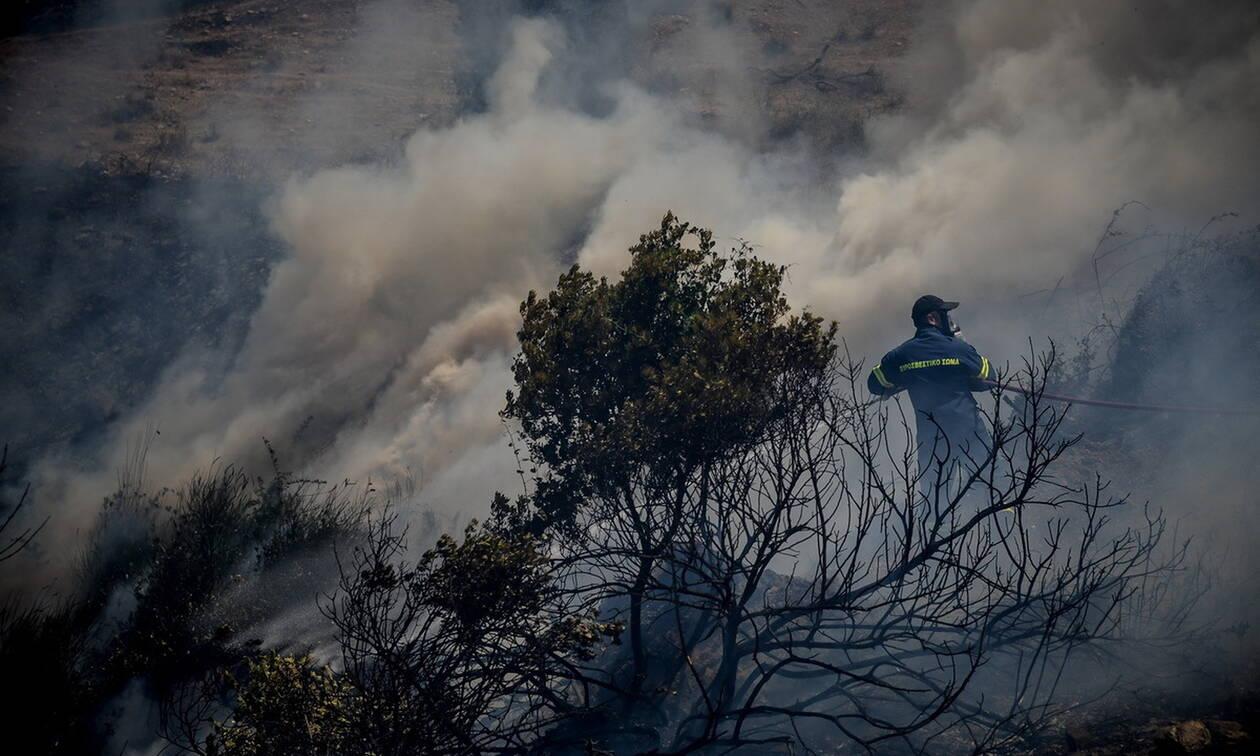 Φωτιά ΤΩΡΑ: Υπό μερικό έλεγχο η πυρκαγιά στην Εύβοια