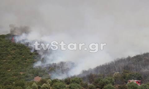 Φωτιά στη Φθιώτιδα: Καλύτερη η εικόνα της πυρκαγιάς (pics+vid)