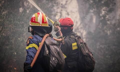 Μεγάλη πυρκαγιά στη Μάνδρα (pics)