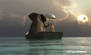 Σήμερα 18/07: Με βάρκα την ελπίδα