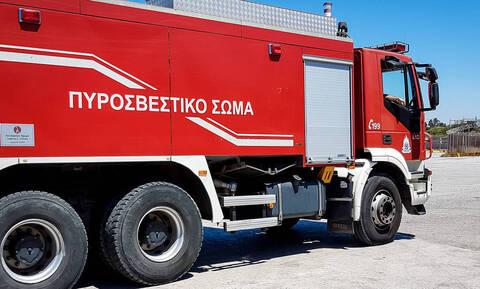 Φωτιά ΤΩΡΑ: Συναγερμός για τέσσερις πυρκαγιές στη Φθιώτιδα