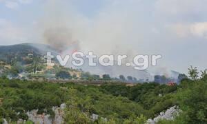 Φωτιά ΤΩΡΑ: Η πυρκαγιά κύκλωσε τη Δίβρη - Εκκενώνεται το χωριό (pics)