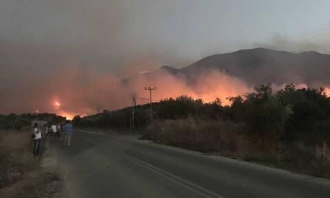 Φωτιά ΤΩΡΑ: Μεγάλη πυρκαγιά στην Ανατολική Μάνη