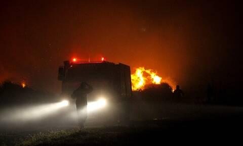 Φωτιά ΤΩΡΑ: Μάχη με τις φλόγες σε έξι πύρινα μέτωπα - Δύσκολη νύχτα για τους πυροσβέστες