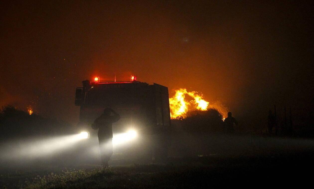 Φωτιά ΤΩΡΑ στον Παρνασσό: Καίγεται το δάσος στην Ελάτεια - Εκκενώθηκε κατασκήνωση