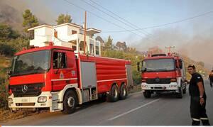 Из-за пожара на Парнасе были эвакуированы жители двух населенных пунктов