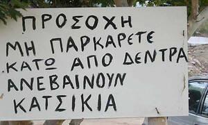 Οι πιο αστείες πινακίδες σε ελληνικά χωράφια! (pics+vid)
