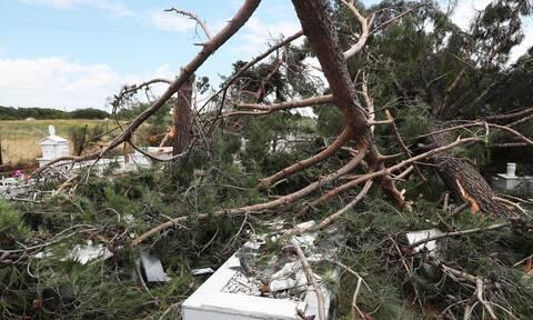 Χαλκιδική: Η στιγμή που η φονική καταιγίδα «χτυπά» αυτοκίνητο – Μαρτυρίες-σοκ από τους επιβάτες
