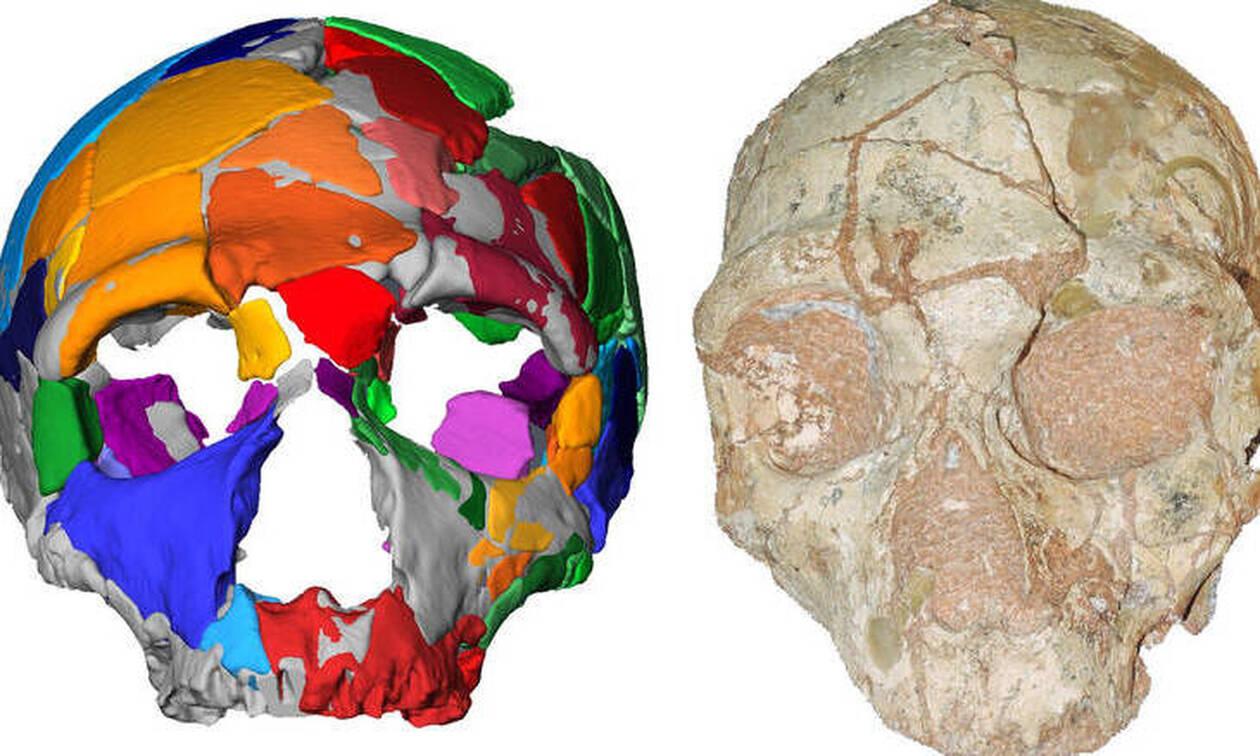 Ανακαλύφθηκε στην Ελλάδα το αρχαιότερο εύρημα Homo sapiens στην Ευρασία