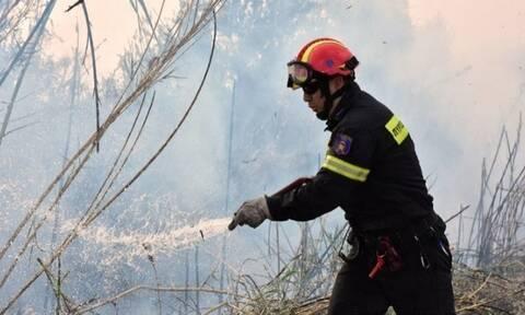 Ζακυνθος: Πυρκαγιά στο χωριό Άγιο Κήρυκος