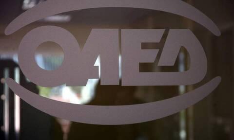 ΟΑΕΔ: Πρόγραμμα με επίδομα 2.800 ευρώ για ανέργους