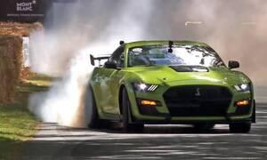Μία Mustang GT500 και μία Jaguar F-Type ξεσήκωσαν το Goodwood