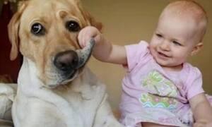 Μωράκι βλέπει κουτάβι και βγάζει πραγματικές κραυγές χαράς (vid)