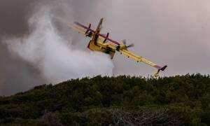 Φωτιά ΤΩΡΑ: Πύρινα μέτωπα σε Ναύπλιο και Θάσο – Κοντά σε σπίτια οι φλόγες