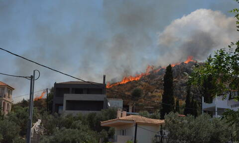 Φωτιά σε Ναύπλιο και Θάσο: Υπό έλεγχο τα πύρινα μέτωπα