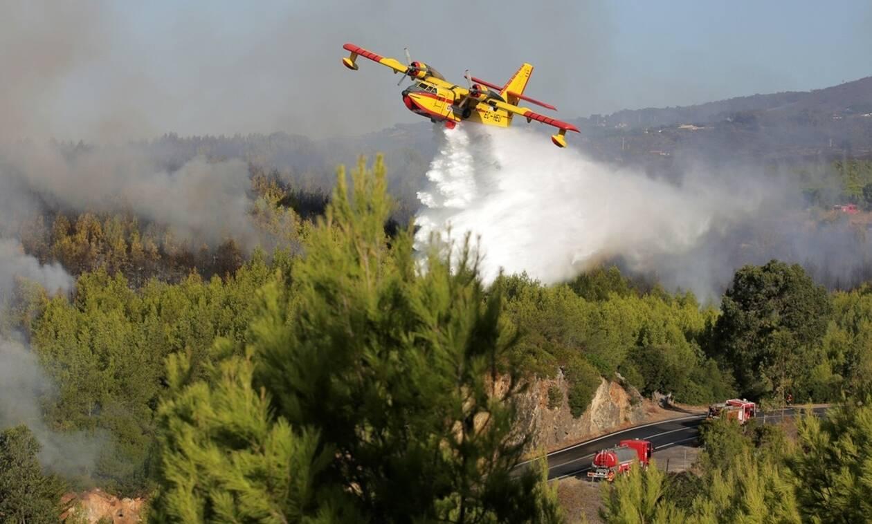 Πάνω από 900 πυροσβέστες αγωνίζονται για να θέσουν υπό έλεγχο πυρκαγιές στην κεντρική Πορτογαλία