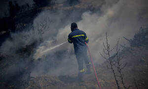 Φωτιά ΤΩΡΑ: Διάσπαρτες εστίες στον Κιθαιρώνα – Μάχη των πυροσβεστών να τη θέσουν υπό έλεγχο