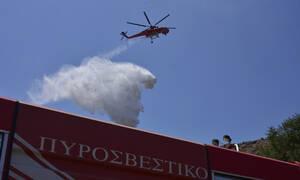 Φωτιά ΤΩΡΑ - Ιωάννινα: Διπλό μέτωπο σε Καστρίτσα και Κοσμηρά